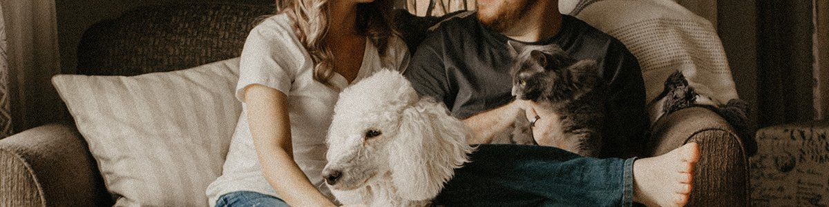 Couple and Pets on Couch Together